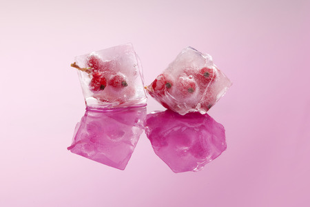 redcurrant: Redcurrant frozen in ice cubes isolated on pink background with reflections. Fresh summer fruit eating.