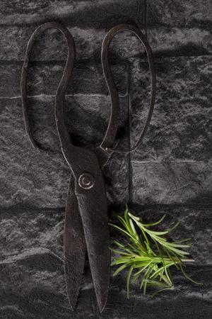 antique scissors: Forbici antichi e rosmarino su pietra nera sfondo, vista superiore. Culinary concetto di erbe.