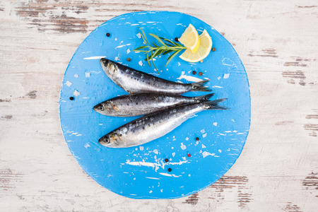 european anchovy: Three fresh anchovy fish on blue round kitchen board on white wooden table, top view. Culinary seafood concept. Delicious healthy eating.