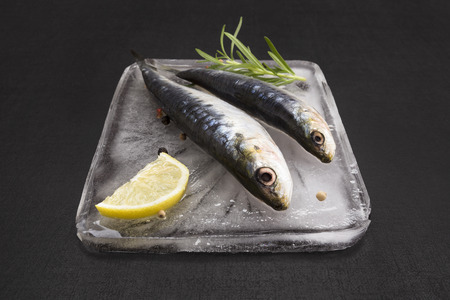 anchovy fish: Mediterranean seafood concept. Fresh anchovy fish on ice plate with colorful peppercorn, fresh herbs and lemon on black textured background.