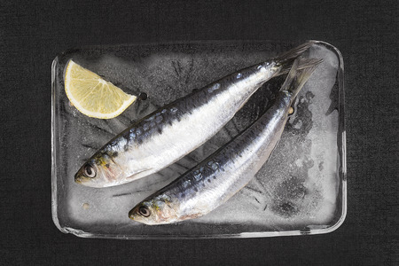 anchovy fish: Mediterranean seafood concept. Fresh anchovy fish on ice plate on black textured background. Stock Photo