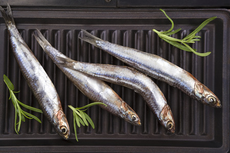 anchovy fish: Fresh anchovy fish with fresh herbs on grill. Culinary seafood eating. Stock Photo