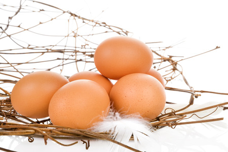 culinary arts: Fresh organic natural brown eggs isolated on white background. Fresh modern image language. Culinary arts.