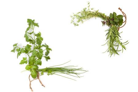 Verse basilicum, koriander, bieslook, peterselie en munt kruiden op een witte achtergrond, bovenaanzicht