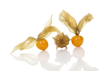 husk tomato: Physalis, ground cherry isolated on white background
