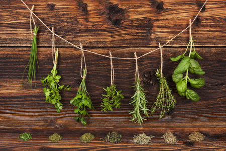 Aromatic herbs, basil, coriander, parsley, chive, mint and rosemary hanging on string on old country style wooden background. Stock Photo