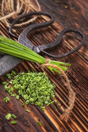 hierbas: Cebolletas frescas y secas de hierbas con tijeras de la vendimia en el fondo de madera rústica. Foto de archivo