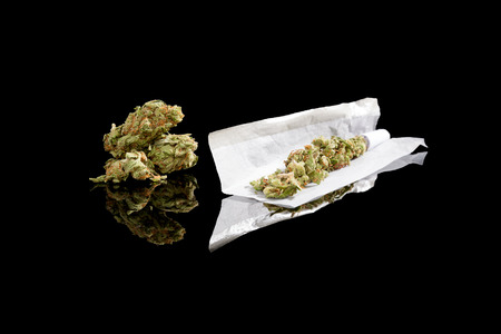 reefer: Marijuana bud and cigarette rolling paper isolated on black background
