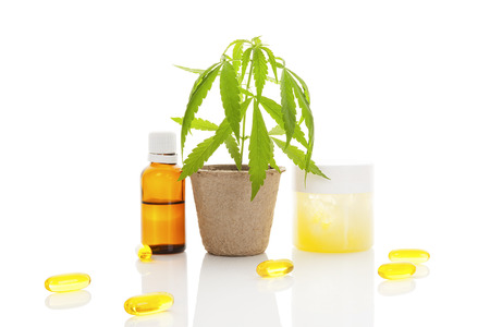 Moisturizer, cream, shampoo, oil and young cannabis plant in plant pot isolated on white background Archivio Fotografico