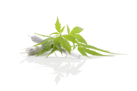 spliff: Marijuana cigarette joint, bud and foliage isolated on white background. Medical marijuana, alternative medicine. Stock Photo