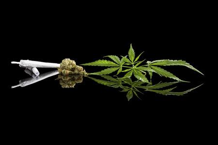 spliff: Marijuana background. Cannabis cigarette joint, bud and hemp leaves isolated on black background. Addictive drug or alternative medicine. Stock Photo