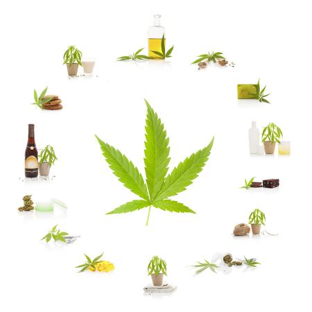 대마초와 그 사용. 마리화나 잎 마리화나 제품은 흰색 배경에 고립입니다. 화장품, 대마 우유, 대마 오일, 쿠키, 브라우니와 영양 보충제.