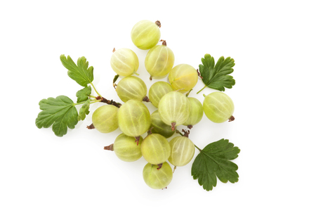 Organic gooseberry from above.