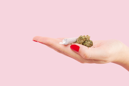 reefer: Cannabis bud and marijuana cigarette in female hand with red fingernails isolated on pink background. Teenager drug abuse. Stock Photo
