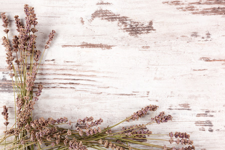 dries: Lavender background. Lavender on white wooden antique textured background, top view, provence style. Stock Photo