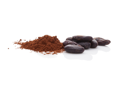 cocoa beans: Cocoa beans and cocoa powder isolated on white background. Healthy superfood.
