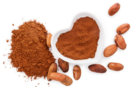 dry powder: Cocoa beans and cocoa powder on white background, flat lay. Healthy superfood. Stock Photo