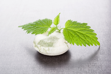 inflammatory: Stinging nettle cosmetics. Fresh nettle leaves and organic hard soap. Healthy natural cosmetics.