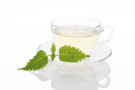 stinging  nettle: Stinging nettle tea. Fresh nettle leaves and nettle tea in glass. Alternative medicine. Stock Photo