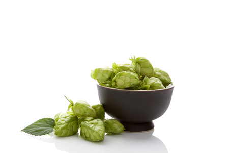 Hops in bowl on white background.