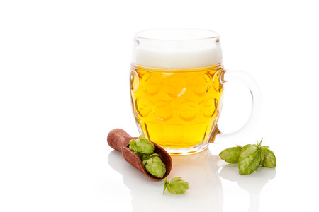 Glass of beer with hop fruit in spoon isolated on white background. Fresh beer drinking.