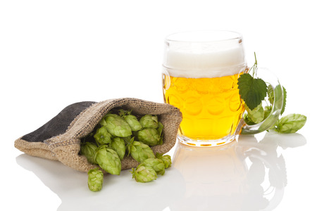 lupulus: Glass of beer with hop fruit in burlap bag. isolated on white background