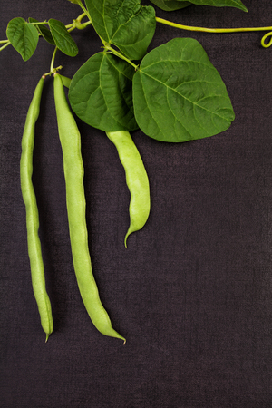 Green raw legumes on black surface, green beans from above. Healthy legume eating. Reklamní fotografie
