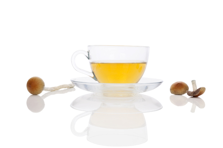 Psychedelic mushroom tea in cup with fresh psilocybin mushrooms, isolated on white background. Natural remedy. Alternative medicine.