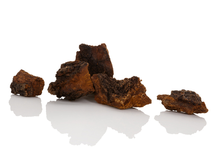 Medicinal chaga mushroom pieces isolated on white background.