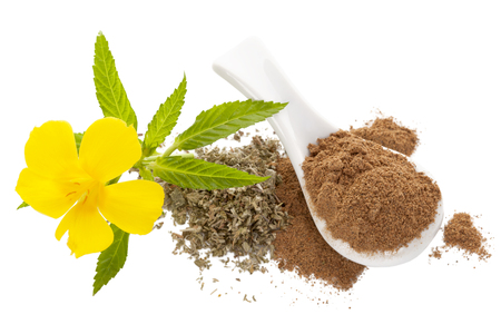 Damiana flower and damiana dried leaves and powder isolated on white background from above. Flat lay. Foto de archivo