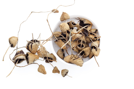 Dried magic mushrooms in cup from above. Isolated on white background. Flat lay.