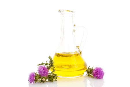 Carduus Thistle Flower oil extract in glass jar with thistle flowers isolated on white background.