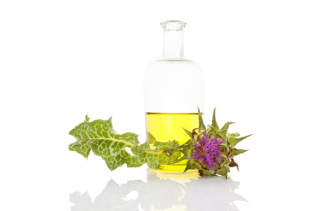 Healthy milk thistle oil in glass bottle isolated on white background. Healty medicinal plant. Banco de Imagens - 98957860