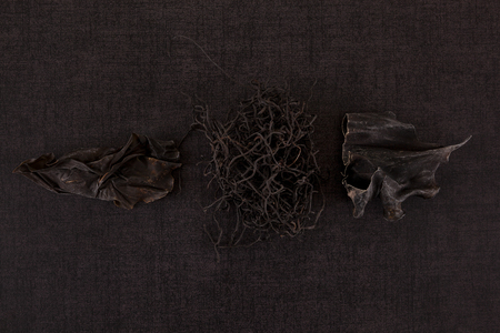 Traditional chinese medicine seaweed and Dan Shen on black background. TCM top view.