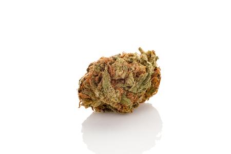 Marijuana bud isolated on white background. Stock Photo