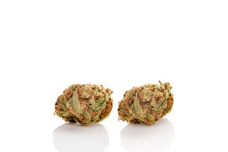 Two marijuana buds isolated on white background. Stock Photo