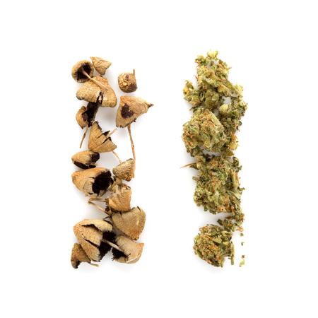 Dry marijuana and psilocybin magic mushrooms isolated on white background top view. Stock Photo