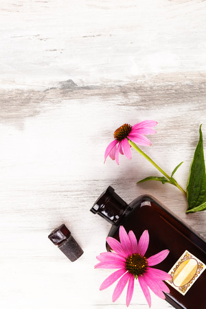 Echinacea flowers with oil extract in glass jar on wooden table from above.