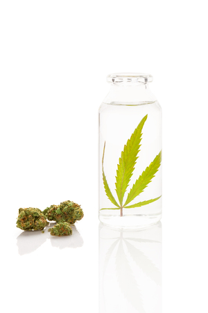 CBD Oil. Cannabis in bottle of ethanol with marijuana buds. Extraction concept. Stock Photo
