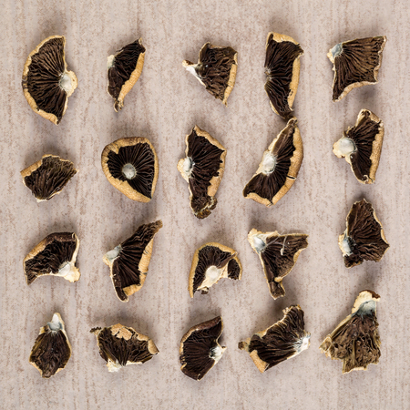 Dried magic mushrooms from above. Knolling flat lay background. Entheogen, alternative medicine.