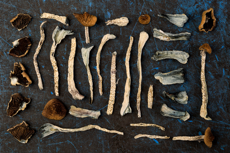 Dried magic mushrooms from above. Knolling flat lay background. Natural remedy. 스톡 콘텐츠 - 117780008
