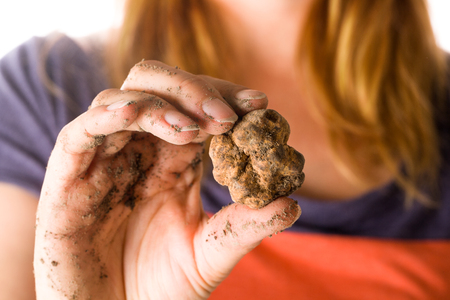 Young woman holding white truffles. Culinary food ingredient.