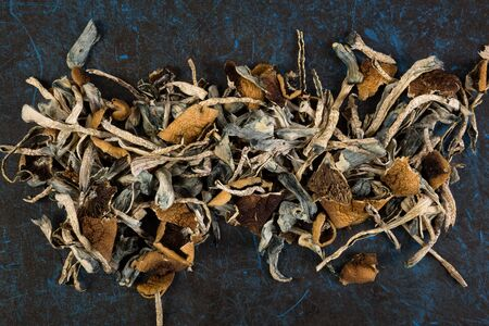 Dried psilocybin mushroom on blue background, top view. Psychedelic therapeutic drug use.