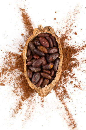 Fresh roasted cocoa beans isolated on white background from above. Healthy superfood.