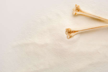 White Collagen powder background with bones. Natural beauty and health supplement for skin and bones.