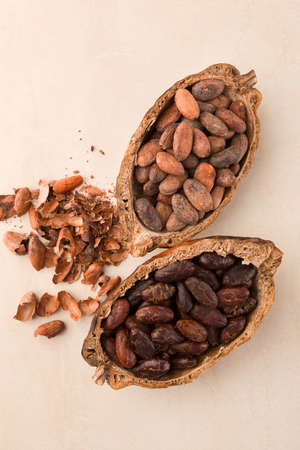 Unpeeled and fresh roasted cocoa beans in a pod on beige background. Superfood.