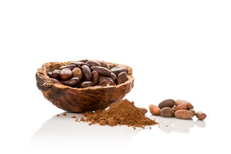 Cocoa powder, fresh roasted and unpeled beans isolated on white background. Stok Fotoğraf
