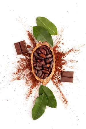 Composition with cocoa powder, beans and chocolate on white background from above. Stok Fotoğraf