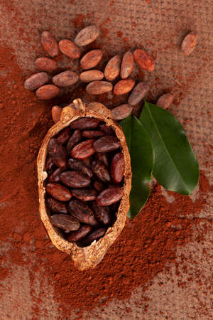 Cocoa beans in pod, chocolate powder and leaves on table, flat lay. Delicious dark chocolate background. Natural superfood.