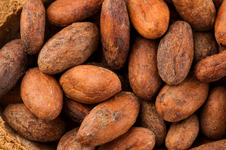 Unpeeled cocoa beans background from above. Superfood.